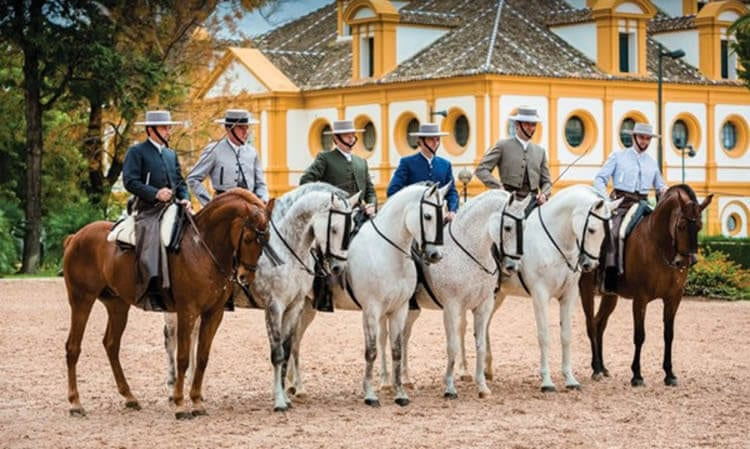 Royal Andalusian School of Equestrian Art, Jerez